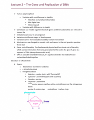 BIOL10004 Lecture Notes - Lecture 2: Adenine, Dna Supercoil, Chromatin