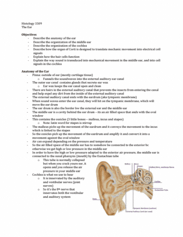 Class Notes for Anatomy and Cell Biology 3309 at Western University ...