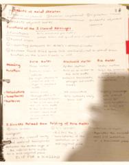 KNES 259 Midterm: brain summary