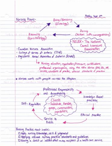 nurs-1420u-lecture-1-nurs-1420u-nursing-as-a-caring-profession-and-nurse-client-relationship