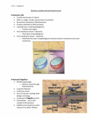 MULT10011 Lecture Notes - Lecture 5: Flagellin, Cell Membrane, Peptidoglycan