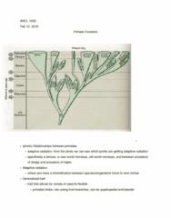 ARCL-1006EL Lecture Notes - Lecture 9: Adaptive Radiation, Quadrupedalism, Bipedalism