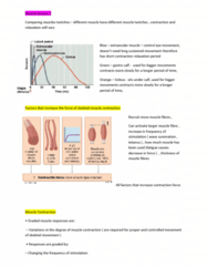 9808 Lecture Notes - Lecture 6: Extraocular Muscles, Skeletal Muscle, Muscle Fatigue