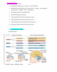 9808 Lecture Notes - Lecture 2: Central Nervous System, Corpus Callosum, Dura Mater
