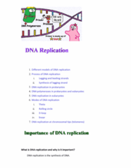 BIO282 Lecture Notes - Lecture 24: Telomerase, Nuclear Dna, Dna Supercoil