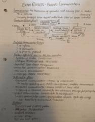 71-100 Final: Business Communications - Exam review sheet