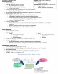BIOL10004 Lecture Notes - Lecture 19: Placenta, Viviparity, Cloaca