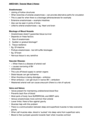 IMED1001 Study Guide - Final Guide: Neurovascular Bundle, Vena Comitans, Ischemia