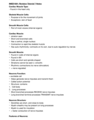 IMED1001 Study Guide - Final Guide: Euchromatin, Neuroglia, Schwann Cell