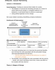 AMB206 Study Guide - Final Guide: Brand Equity, Hand Washing, Social Marketing