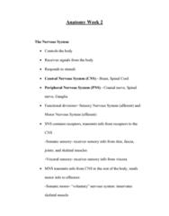 BIOL 205 Lecture Notes - Lecture 4: Vena Comitans, Basement Membrane, Skeletal Muscle