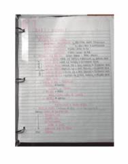 BIOL 2001C Quiz: a&p2 practical 1 exam