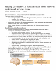 Anatomy and Cell Biology 3319 Chapter Notes - Chapter 12: Central Nervous System, Cranial Nerves, Spinal Canal