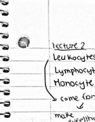 MICB 202 Lecture 2: Micb 202 lecture notes day 2