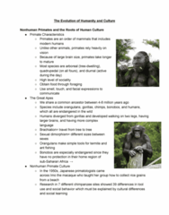 ANTH 1002 Study Guide - Midterm Guide: Oldowan, Australopithecine, Portable Art