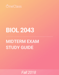 BIOL 2043 Study Guide - Fall 2018, Comprehensive Midterm Notes - Ovule, Gynoecium, Sporophyte