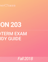 ECON 203 Study Guide - Fall 2018, Comprehensive Midterm Notes - Gross Domestic Product, Promiscuity, Operating System