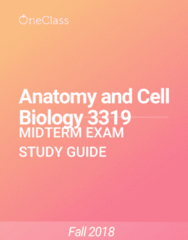 Anatomy and Cell Biology 3319 Study Guide - Fall 2018, Comprehensive Midterm Notes - Urinary Bladder, Sweat Gland, Spinal Cord