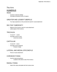 ANA300Y1 Lecture Notes - Lecture 5: Radial Tuberosity, Hyaline Cartilage, Humerus