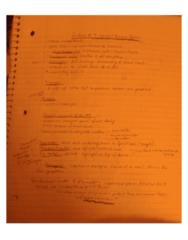 BIOC32H3 Lecture 9: Receptors