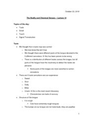 PSYO 1011 Lecture Notes - Lecture 15: Tongue Map, Phantom Limb, Visual Phototransduction