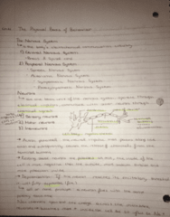 PSY100H1 Chapter Notes - Chapter 4: Brein, Mortise And Tenon, Serotonin