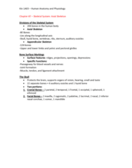 KINESIOL 1A03 Lecture Notes - Lecture 7: Inferior Nasal Concha, Hyoid Bone, Ossicles