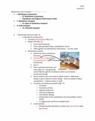 01:119:115 Lecture Notes - Lecture 6: Fluid Mosaic Model, Membrane Transport, Signal Transduction