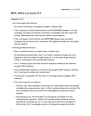 BIOL 4004 Study Guide - Midterm Guide: Dna Ligase, Mre11A, Spo11
