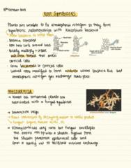 BIOL 2043 Lecture Notes - Lecture 14: Dermis