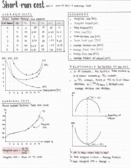 ECON 101 Lecture Notes - Lecture 29: Marginal Cost
