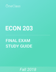 ECON 203 Study Guide - Comprehensive Final Exam Guide - Gross Domestic Product, Promiscuity, Operating System