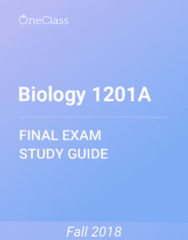 Biology 1201A Study Guide - Comprehensive Final Exam Guide - Ploidy, Zygote, Zygosity