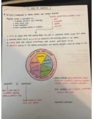 EXSC 191 Midterm: Exam 1 Study Guide pg.1
