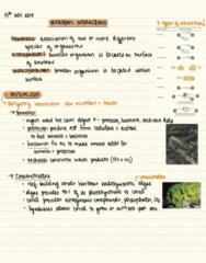 BIOL 2053 Lecture Notes - Lecture 41: Termite, Protozoa, Archaea