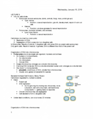 BIOLOGY 171 Lecture Notes - Lecture 3: Asexual Reproduction, Dna Replication, Eukaryote