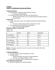 BIO SCI 94 Lecture Notes - Lecture 5: Genetic Drift, Allele Frequency, Genotype Frequency